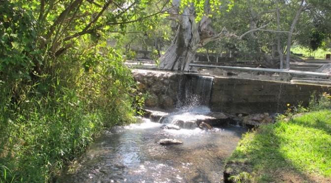 Una comunidad de Jalisco se enfrenta a las retro excavadoras para proteger su agua